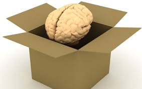 "The Brain And The ""Box"""