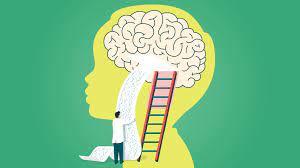 Brain Growth